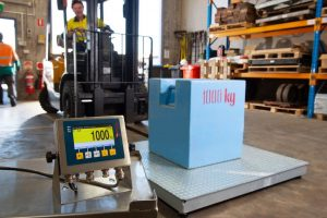 A500 Pallet Scale measuring 1000kg load