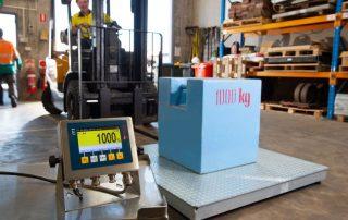A500 Pallet Scale measuring 1000kg load