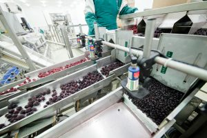 Checkweighing in a food processing facility