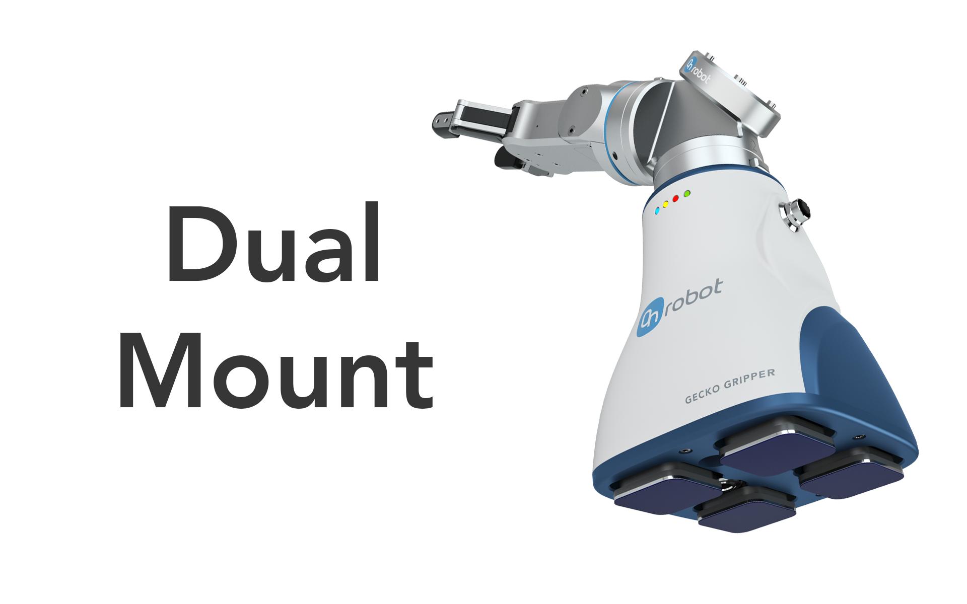 Dual Mount Carousel