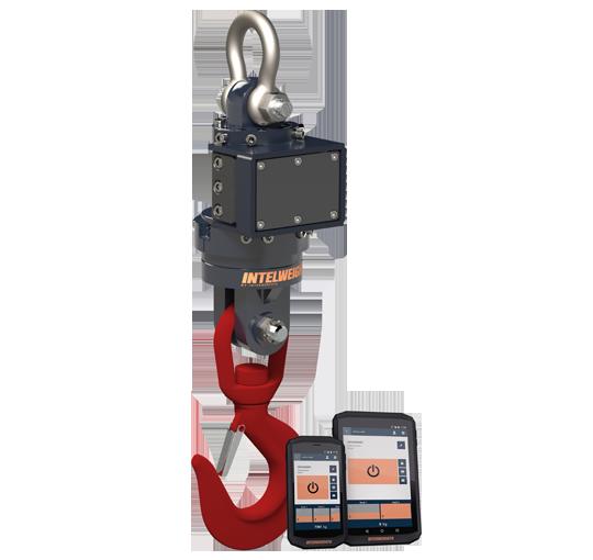 crane scale Intermercato-IWS-Hook-scale-100-SHV